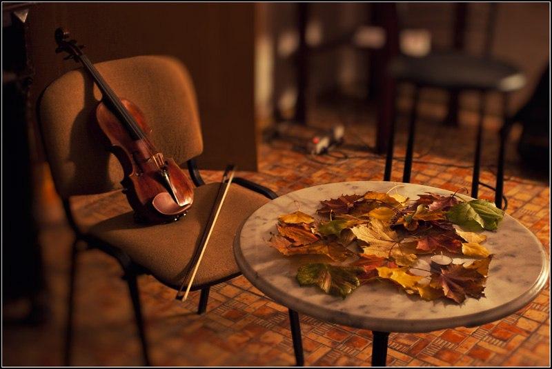 Уютные вечера в Шымкенте