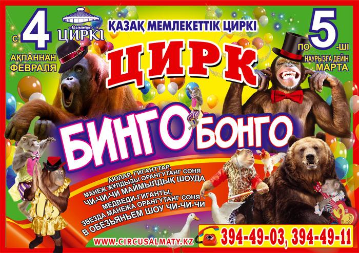 Цирк Бинго-Бонго в Алматы