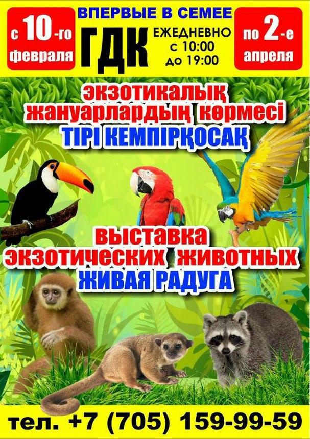 """Выставка экзотических животных """"Живая Радуга"""""""