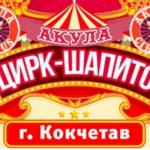 "Цирк ""Акула"" в Кокшетау"