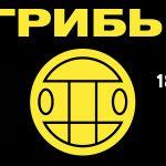 """Группа """"Грибы"""" в Астане"""