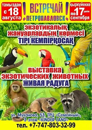 """""""Живая радуга"""" в Петропавловске"""