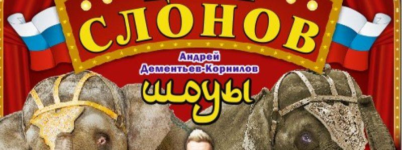 Шоу «Цирк Слонов»