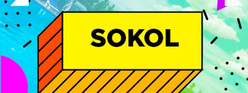 "Бассейн ""СТК Sokol"""