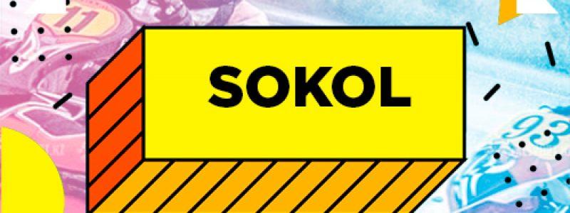 "Картинг CТК ""Sokol"""
