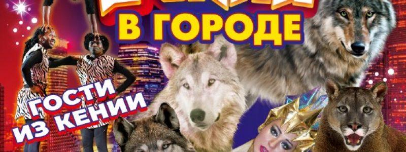 Московский цирк «Волки в городе»